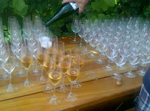 Sparkling wine at Backyard Vineyards
